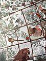 Fresques du studiolo de la villa Médicis (Rome) (5843064496).jpg