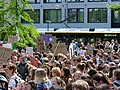 FridaysForFuture protest Berlin 31-05-2019 03.jpg