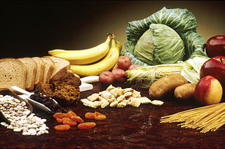 Dietary fiber portion of plant-derived food that cannot be completely digested