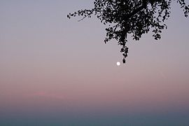 Full moon rising near Linz, Austria.JPG