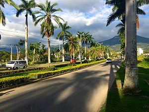 Fusagasugá - Palmas Avenue, Center