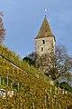 Gügeliturm - Schlossberg - Endingerstrasse 2012-11-04 15-10-15 ShiftN.jpg
