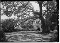 GENERAL VIEW OF NORTH (REAR) ELEVATION - Snee Farm, 1240 Long Point Road, Mount Pleasant, Charleston County, SC HABS SC,10-MOUP.V,2-19.tif