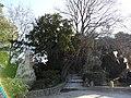 Garden Palais des papes d'Avignon - panoramio - Vinko Rajic (1).jpg
