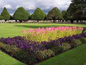 Garden in Hampton Court.jpg