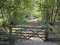 Gate and bridleway to Little Dilton Farm - geograph.org.uk - 430594.jpg