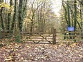 Gate into Macaroni Wood - geograph.org.uk - 1613960.jpg