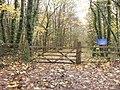Gate into Macaroni Wood - geograph.org.uk - 1613960.jpg
