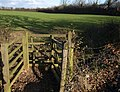 Gate near Clannon Farm - geograph.org.uk - 1629842.jpg