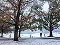 Georgia snow IMG 3450 (38923648871).jpg