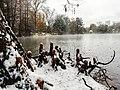 Georgia snow IMG 4130 (38887909342).jpg