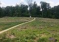 Gettysburg, Slyder's Upper Field.jpg
