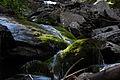 Giglachbach-landauersee 14913 2011-08-31.JPG