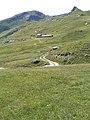 Gita al rifugio Arp 2011 abc13.jpg
