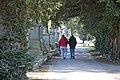 Glasnevin Cemetery - (442797364).jpg