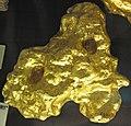 Gold - Viscountess Canterbury Nugget (replica) (John's Paddock, Berlin Diggings, Victoria, Australia) (16638736904).jpg