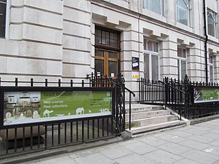 Grant Museum of Zoology and Comparative Anatomy museum in London