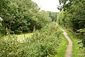 Grantham Canal towpath - geograph.org.uk - 944167.jpg