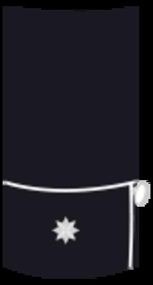 Guardia de Asalto - Image: Guarasal 13