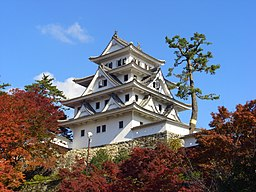 Gujo hachiman castle in autumn
