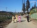Gulmarg - Srinagar views 27.JPG