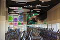 Gym Teresa Sapey Reebok Sports Club.jpg