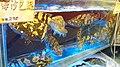 HK 灣仔 Wan Chai 權發海鮮酒家 Kwun Fat Seafood Restaurant 沙巴石斑魚 Sabah Groupers.jpg