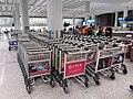 HK 赤鱲角 Chek Lap Kok 香港國際機場 Hong Kong Int'l Airport Terminal T1 August 2019 SSG 37.jpg
