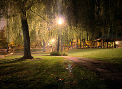 Walking path through willows in Hagerstown City Park.