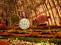 Haifa International Flower Exhibition P1130919.JPG