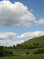 Hambledon Hill from Markham cottages 20070730.jpg