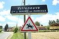 Hameau de Villeneuve à Magny-les-Hameaux le 12 juin 2017 - 44.jpg