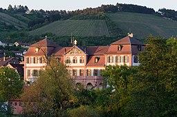 Hammelburg, Schloss von Westen-003