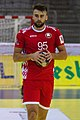 Handball-WM-Qualifikation AUT-BLR 084.jpg