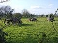 Hay wagons - geograph.org.uk - 977600.jpg