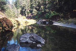 Trinity County, California - Image: Hayfork Creek