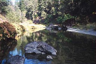 Hayfork Creek river in the United States of America