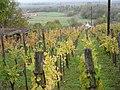 Hegymagas, 8265 Hungary - panoramio (21).jpg