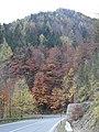 Herbstfarben am Semmering - panoramio.jpg