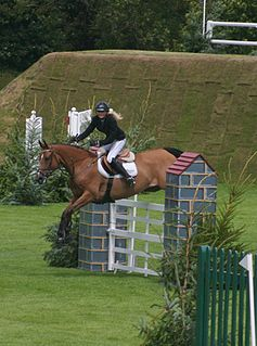 All England Jumping Course at Hickstead show jumping venue in England