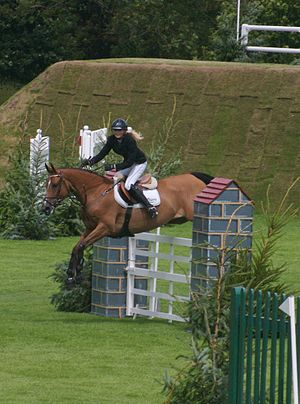 All England Jumping Course at Hickstead - Competitor on Derby course, with Derby bank in the background