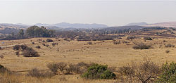 Highveld in winter in Gauteng Province north of Johannesburg