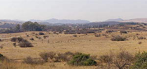 Veld - Highveld in Gauteng Province north of Johannesburg