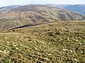 Hillside of Brown Hill towards Wether Hill - geograph.org.uk - 684473.jpg