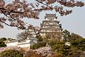 Himejijo 2009-04-08 (3637625564).jpg