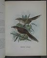 History of the birds of NZ 1st ed p128-2.jpg