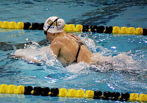 breaststroke by katie hoff at 2008 missouri grand prix - Olympic Swimming Breaststroke
