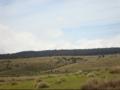 Horton plains.png