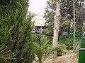 Hospital Doce de Octubre - panoramio.jpg