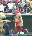 Hot Dog Race (7291474584).jpg